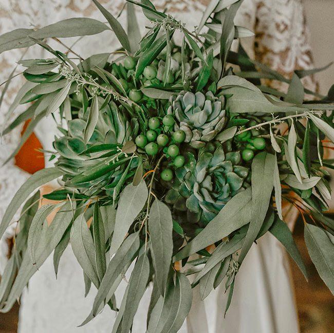 marimonio-cactus-piante-grasse