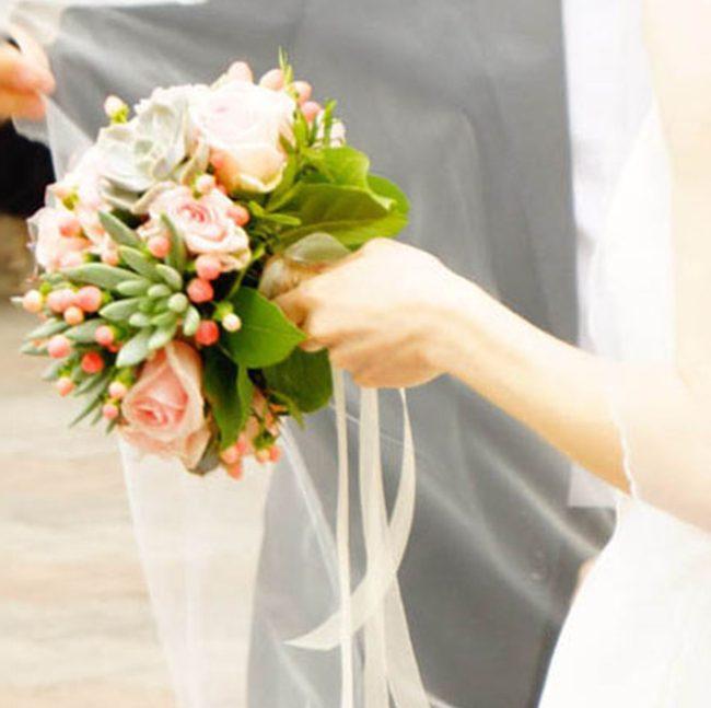 rose-rosa-e-succulente-copertina